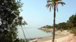 يالي ماشي للجزيرة (Guecheine Djerba قشعيين جربة ©)