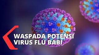 Kopi Bisa Sembuhkan Flu, Hoax atau Fakta Ya?.