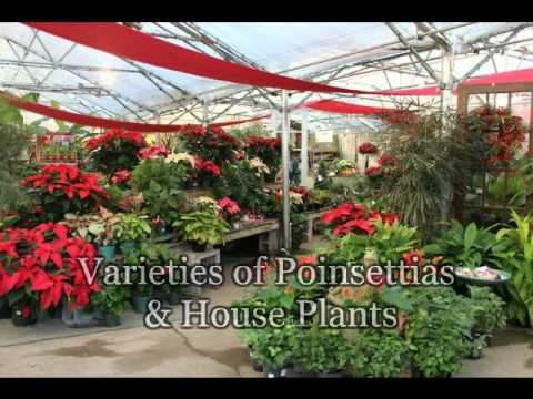 2014 Christmas Shop At River Hill Garden Center