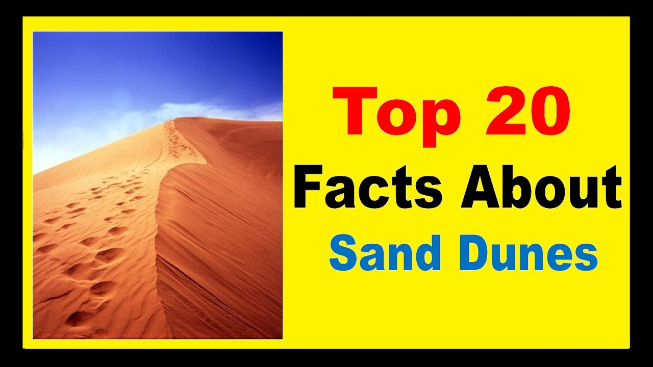 Information About >> Sand Dunes - Facts - YouTube