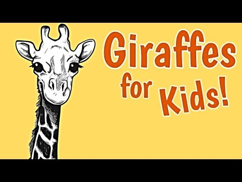 Giraffes for Kids | Animal Learning Videos