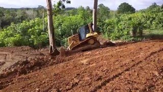 cat d6n xl dropping trees in grand couva