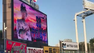 2019年5月17日@神宮球場 東京ヤクルトスワローズ×横浜DeNAベイスターズ ...
