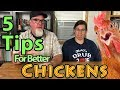 5 Tips for BETTER Backyard Chickens