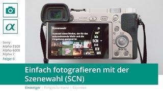 Sony a5100 a6000 a7 - Einfach fotografieren mit der Szenewahl (SCN)