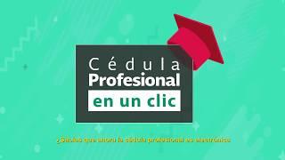 Cédula Profesional Electrónica