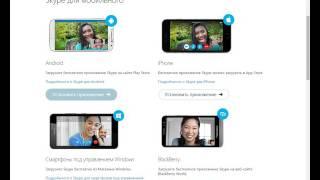 Обучение по Скайпу(Skype)