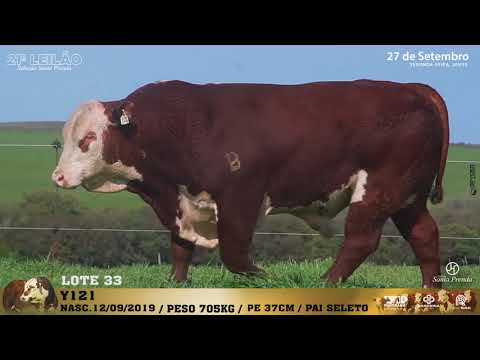 LOTE 033