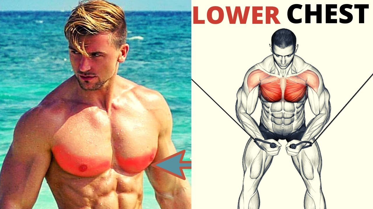 7 BEST LOWER CHEST WORKOUT / musculation bas des pecs