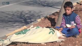 مصر العربية | طفل سوري يحرص على الاعتناء بكلب صدمته سيارة جنوبي تركيا