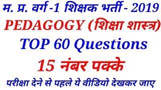 पेडागोजी (PEDAGOGY) के 60 अति महत्वपूर्ण प्रश्न || online study with Dk