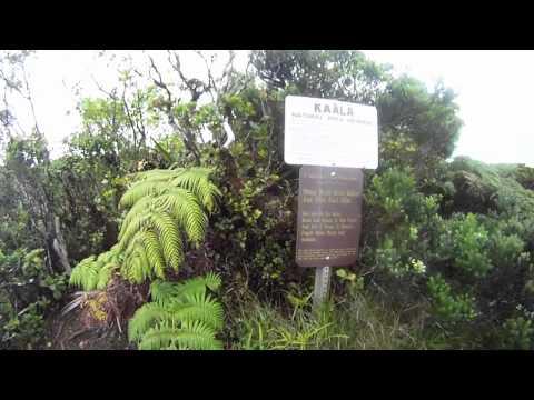 Waianae-Mt. Kaala