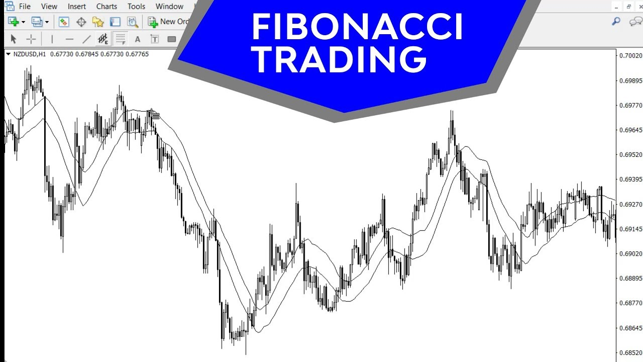 Fibonacci tool forex