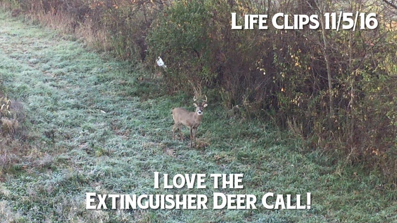 Extinguisher Deer Call Works Heres Proof