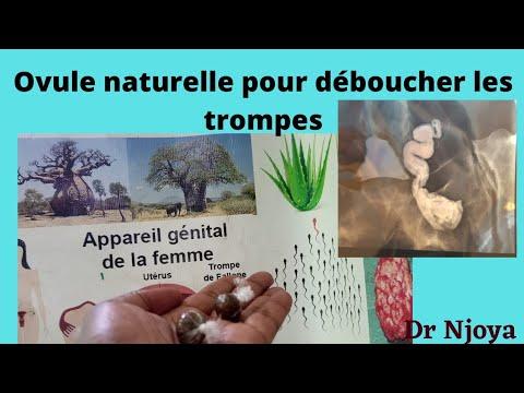 Traitement  des trompes bouchées  de manière  naturelle