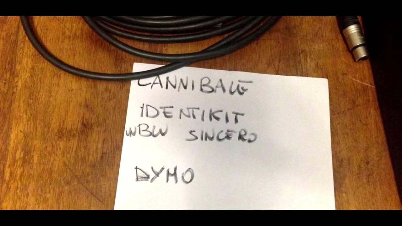 verdena-identikit-live-radio-2-digitalitaly
