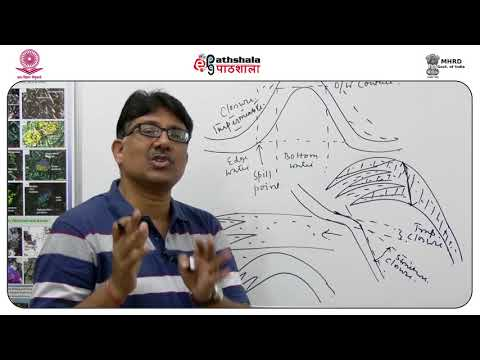Hydrocarbon traps 1