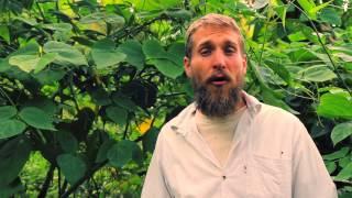 Lesson 1 - Biosphere
