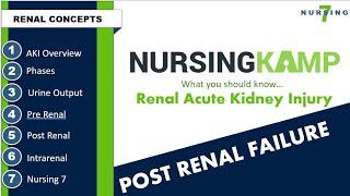 POST RENAL FAILURE Nursing KAMP 2020 Acute Kidney Injury