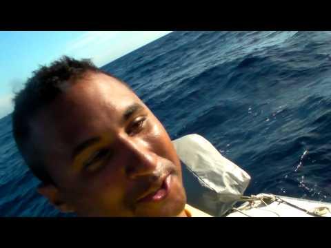 1 SAILFISH E 6 DOURADOS (By Rato&cia Sport Fishing / Beluga)