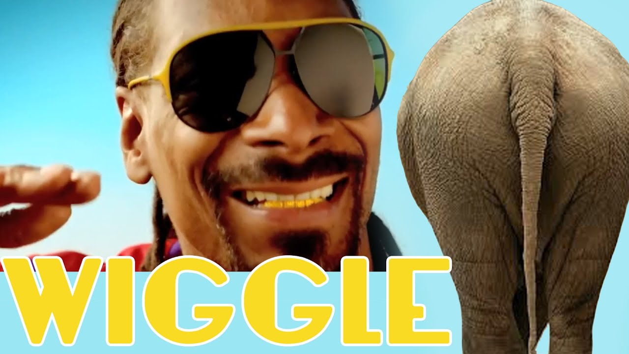 "Jason DeRulo - ""WIGGLE"" feat. Snoop Dogg - ANIMALS DANCING ..."