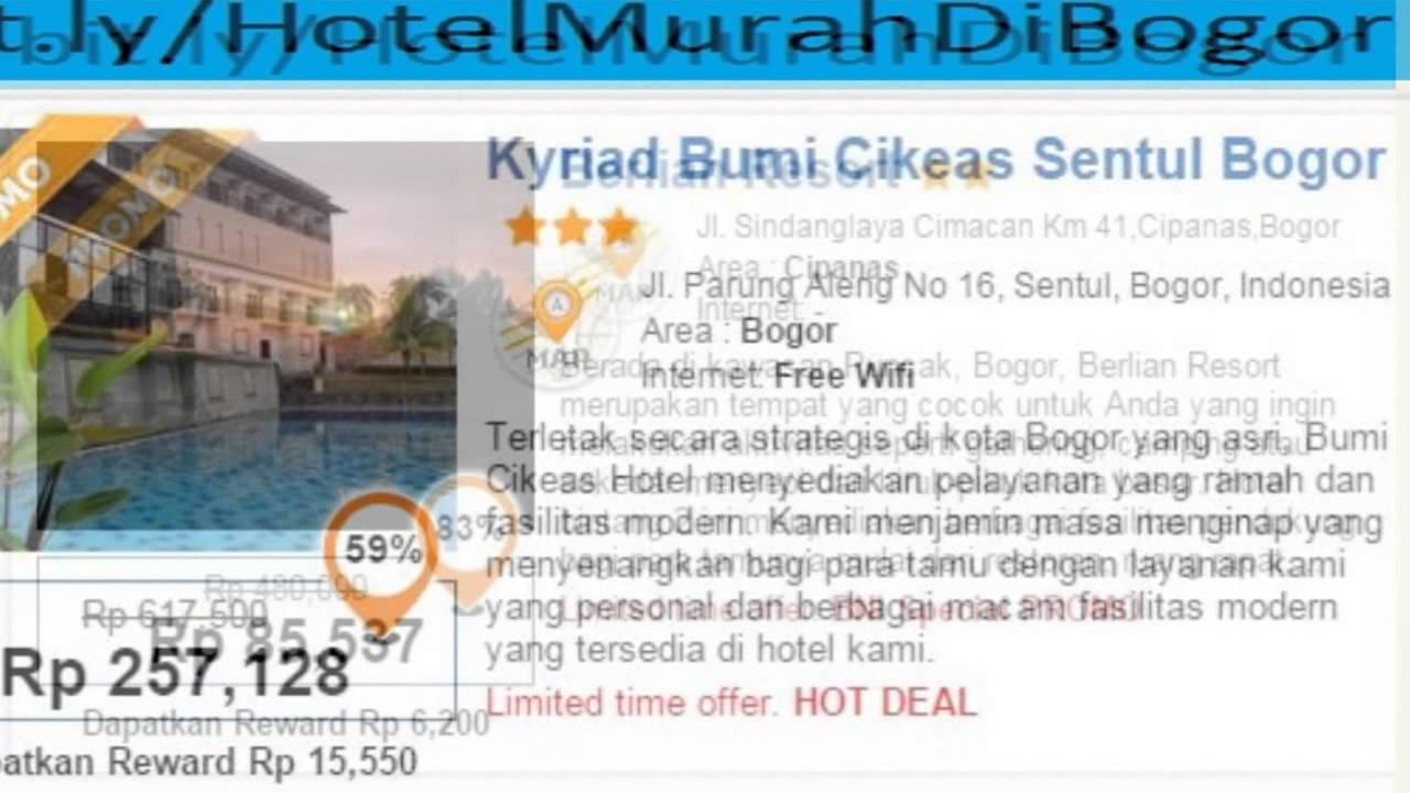 Hotel Bogor Ada Kolam Renang Di Yang Renangnya