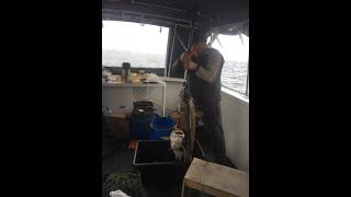 Открытие сезона Морской рыбалки 2016.