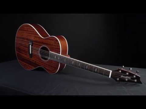 Breedlove Guitars 2018 Stage Exotic And Stage Series Acoustic