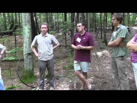 Hubbard Brook Experimental Forest Walking Tour