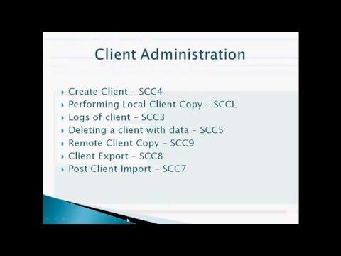 SAP Basis Client Administration - Part 1