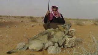 arabian wolf فيلم الذئب العربي