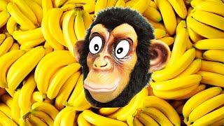 Обезьяна ест Бананы | Песни про Животных | Ба Би Бу Песни для Детей