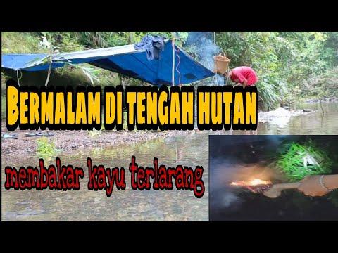 Bermalam Di Hutan Kalimantan , Memancing Dan Survival Untuk Bahan Konsumsi
