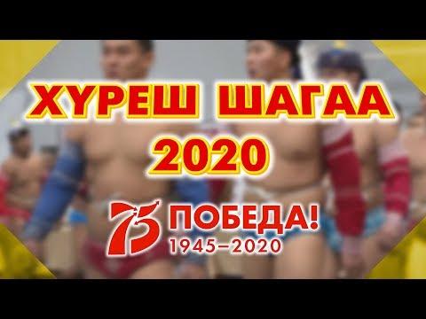 """Прямая трансляция турнира по борьбе хуреш, посвященного празднику """" Шагаа - 2020"""""""