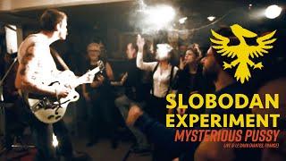 Slobodan Experiment - Mysterious Pussy live @ Le Dahu (Nantes, France)