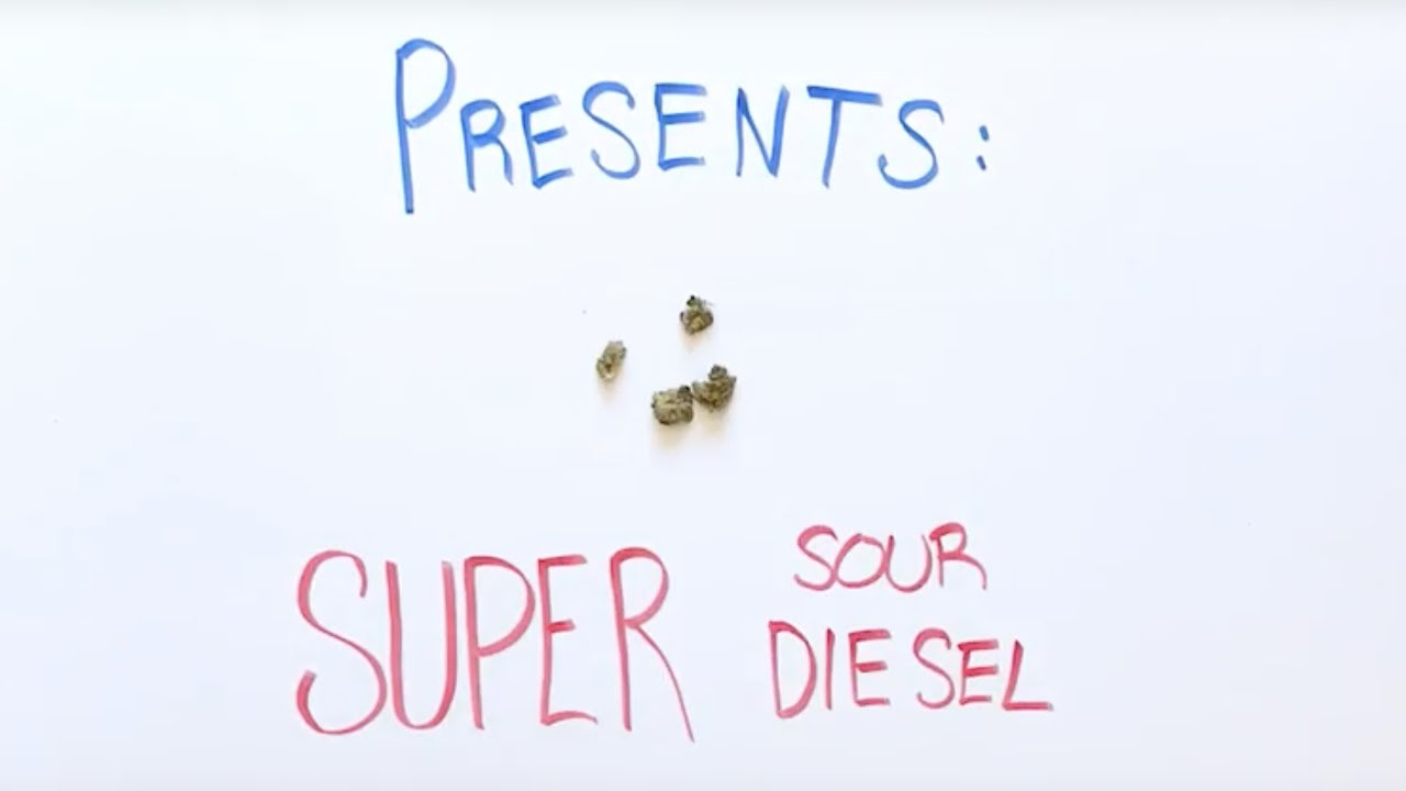 Super Sour Diesel Strain Review