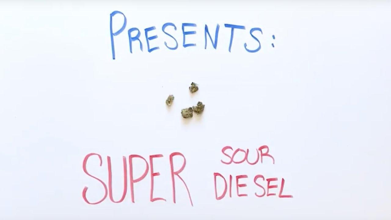 Super Sour Diesel Strain Review