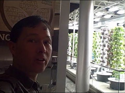 Vertical Tower Garden Feeds 10,000+ People a Year at the World's 4th Busiest Airport