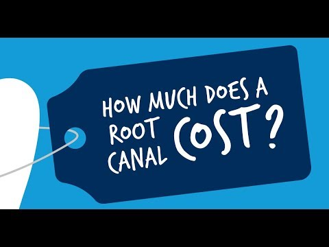 how-much-does-a-root-canal-cost?