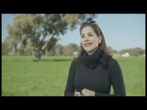 How Amazing Pure Organic Barley Processed in Australia