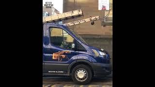 Dog Honking Horn