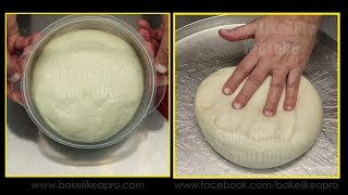 NO FAIL PIZZA DOUGH RECIPE with The NEW Cuisinart Stand Mixer PART 1
