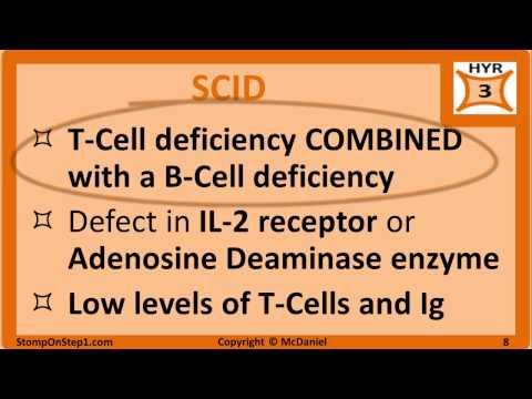 Immunodeficiency: DiGeorge Syndrome SCID IgA Deficiency Nitroblue Tetrazolium MPO