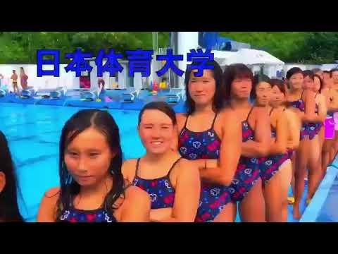 インカレ 水泳