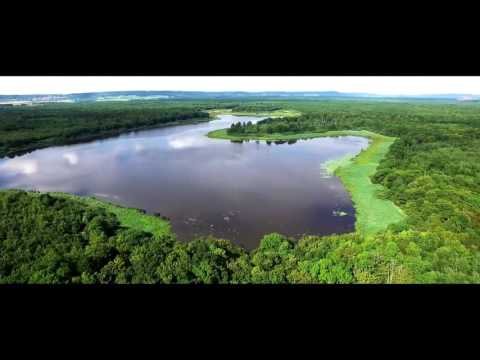 Lorraine Parc naturel regional from above - drone video - Visit Lorraine - EN