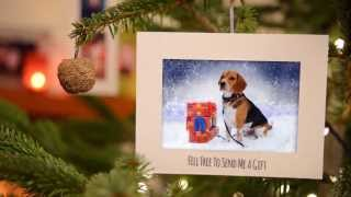 Rafa Beagle - Christmas Tail