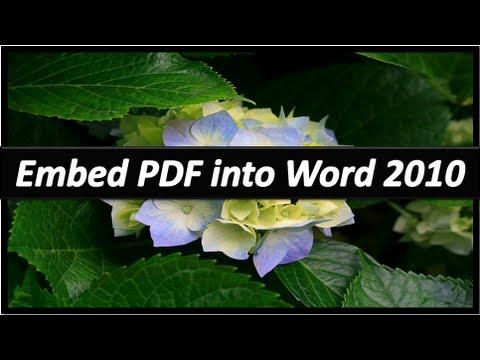 Embed PDF in Word - Microsoft Word