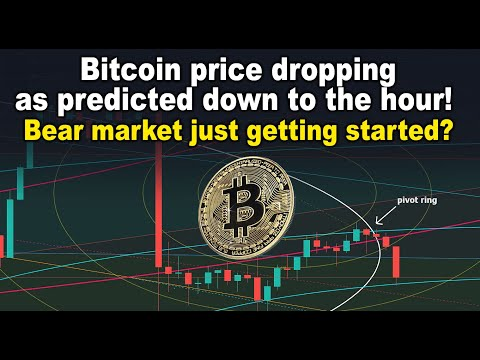 Bitcoin Price Drop Predicted To The Hour! Bear Market Just Getting Started? BTC Price Targets & TA