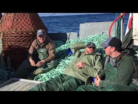 2019 Newfoundland Crab Season, Great Day On The Grand Banks