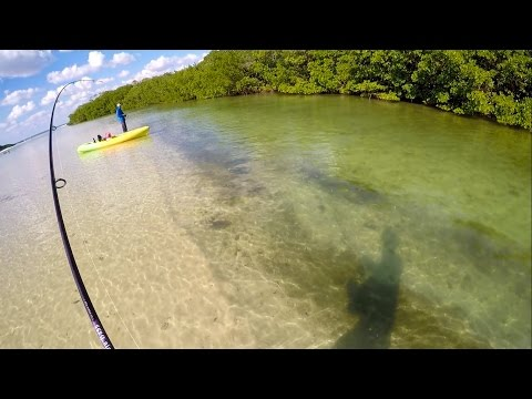 Shallow Water Sheepshead Fishing